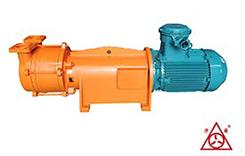 F2BV系列耐腐蚀真空泵